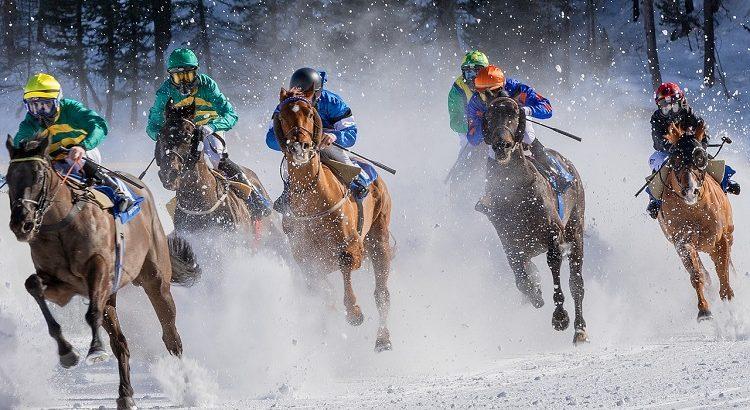 Pferdewetten